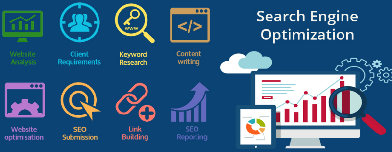 SEO Services And The Best SEO Agency To Hire In Sunshine Coast featured image